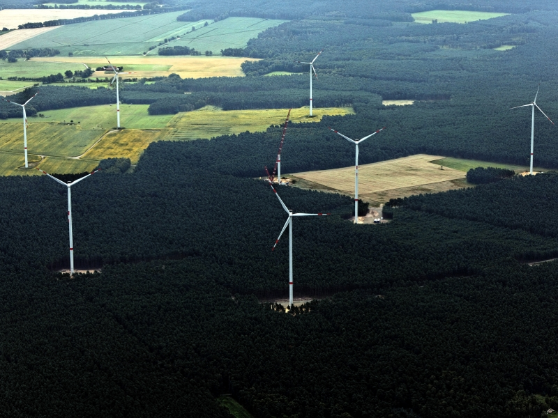 Wind energy in the forest